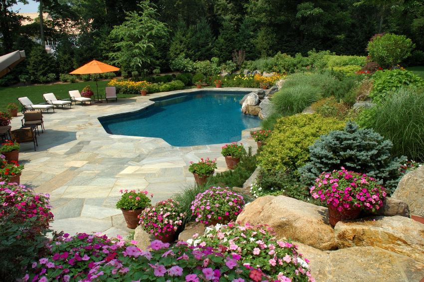 Garden friendly pools for Pool landscaping ideas